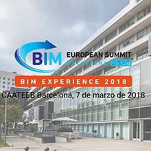 Bim Experience